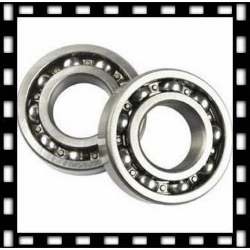 nsk 6006du bearing