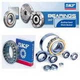 skf lgmt2
